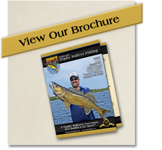 view-our-brochure