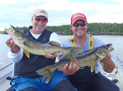 Double HUGE Walleyes caught at Budd's Gunisao Lake Lodge World's Best Trophy Walleye and Northern Pike Fishing, Manitoba, Canada joined Budd's Master Angler Club